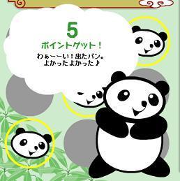 6・10パンダ3兄弟.jpg